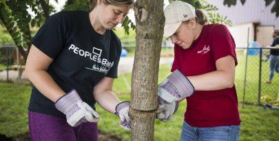 PeoplesBank associates volunteering